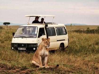 Safari dans le Masai Mara